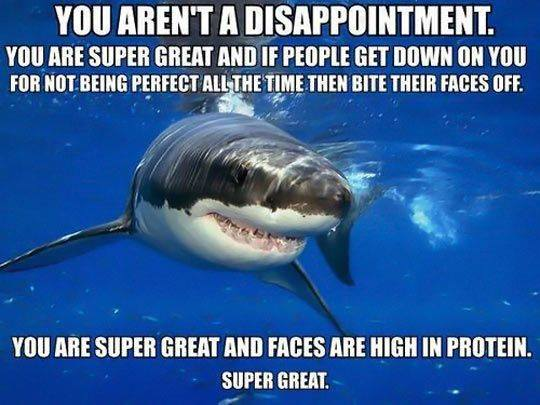 Positive self esteem shark